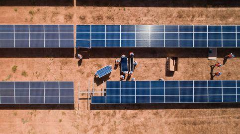 Prodiel EPC construirá parques solares por más de 2.400 M en los próximos cuatro años