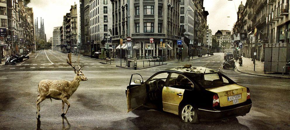 Foto: Últimas noticias de la ciudad podrida