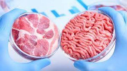 Proteína microbiana y carne 'in vitro': así serán los nuevos alimentos poscovid