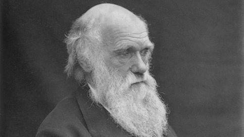 El abominable misterio de Darwin: dos siglos después, continúa sin solución