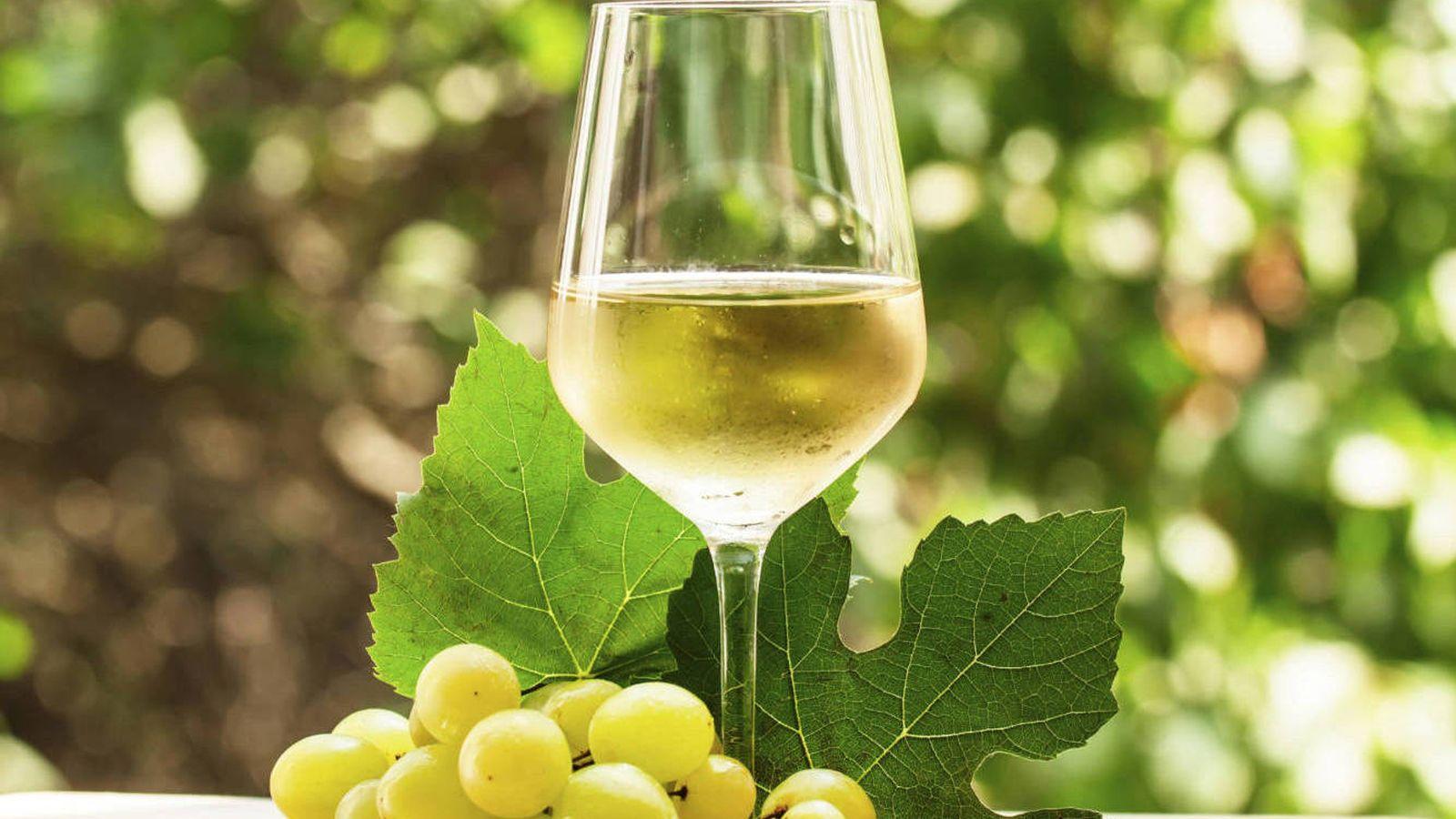 5 mitos sobre los vinos blancos (y por qué hay que desterrarlos)