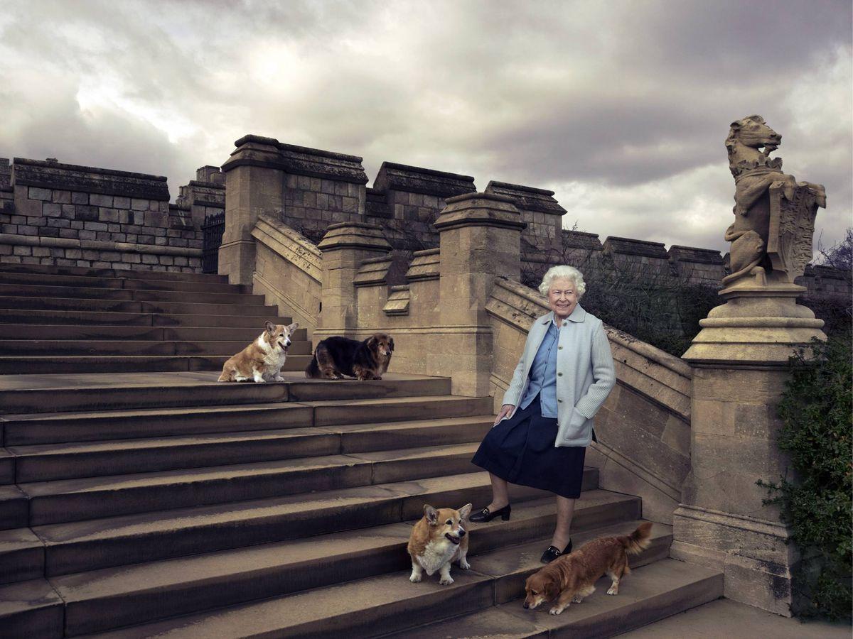 Foto: La reina Isabel, con sus perros en una foto con motivo de su 90º cumpleaños. (Cordon Press)