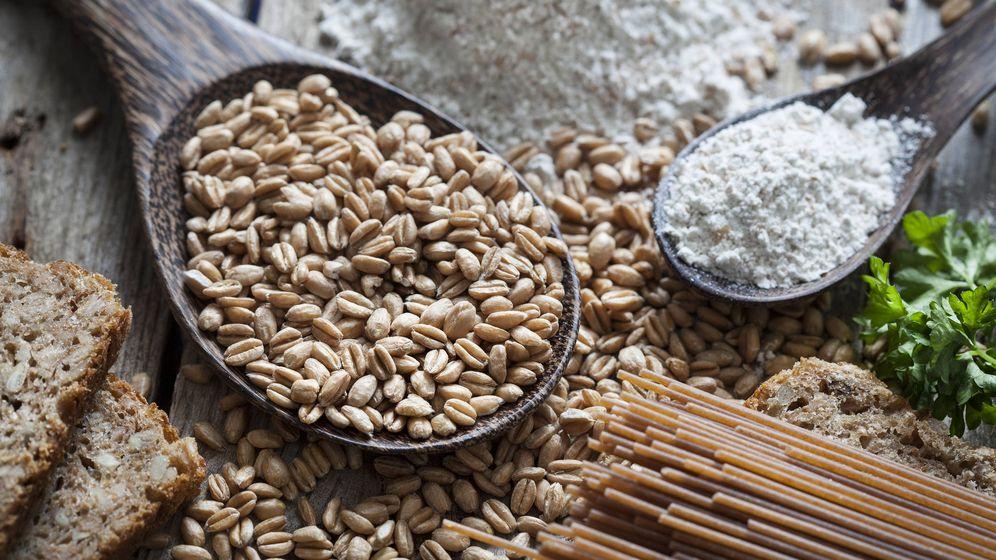 Foto: La espelta, un tipo de trigo. (iStock)