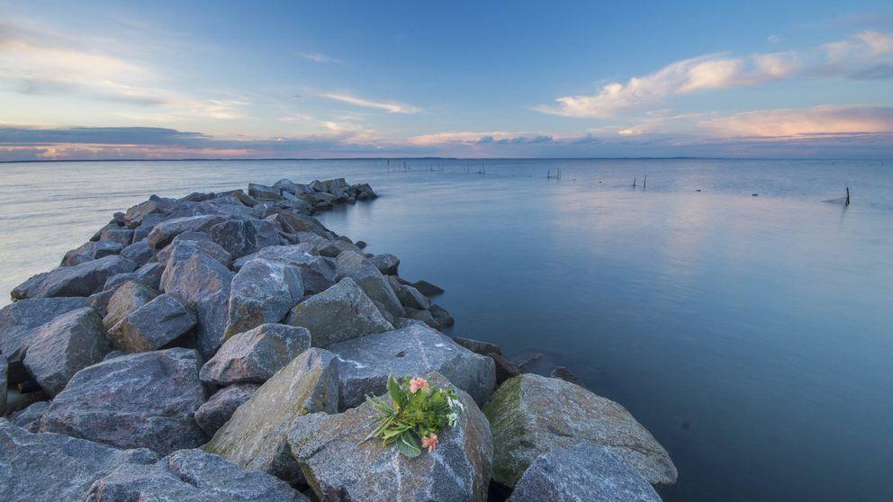 Así serán los funerales del futuro: ya lo hacen en Suecia