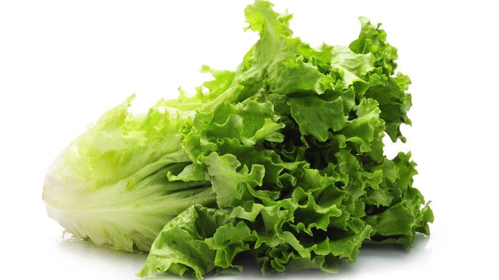 Lechuga: la verdura vestida de enaguas