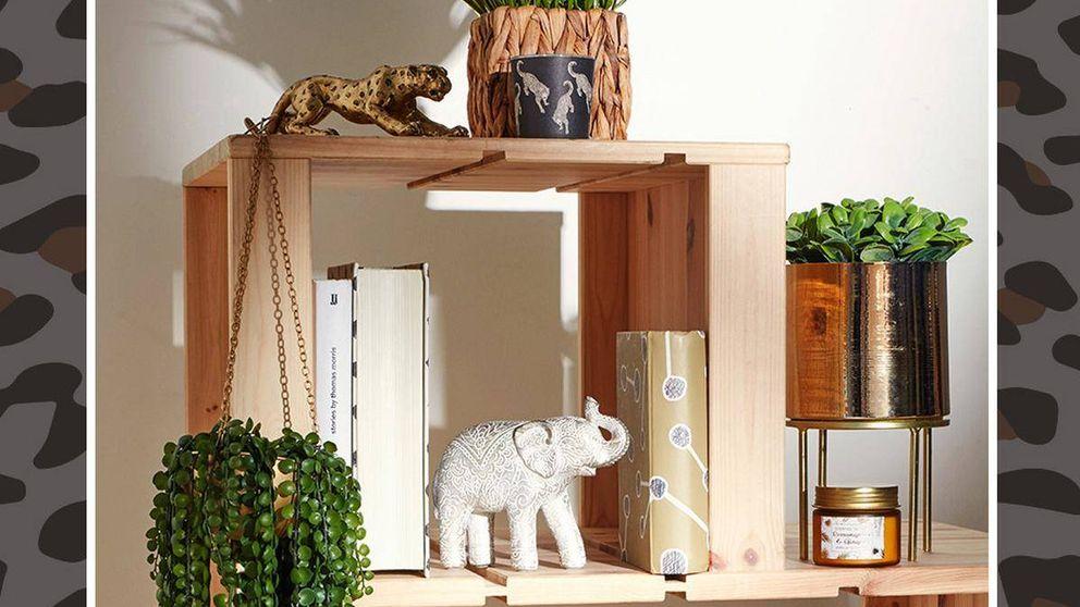 En clave verde: la decoración natural de Primark Home que necesitas para tu hogar