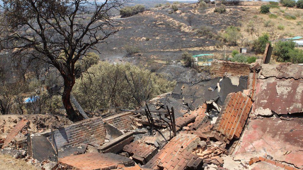 Foto: Los efectos del incendio que el pasado mes de junio y julio afectó a Toledo y Madrid