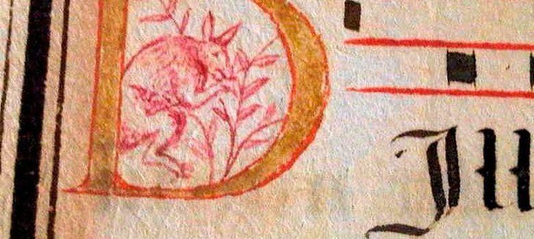 Foto: El supuesto canguro que aparece en un manuscrito portugues del siglo XVI. (Enluminures Gallery)