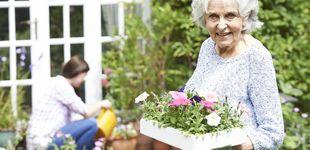 Post de Los grandes beneficios para la salud de regar las plantas todos los días