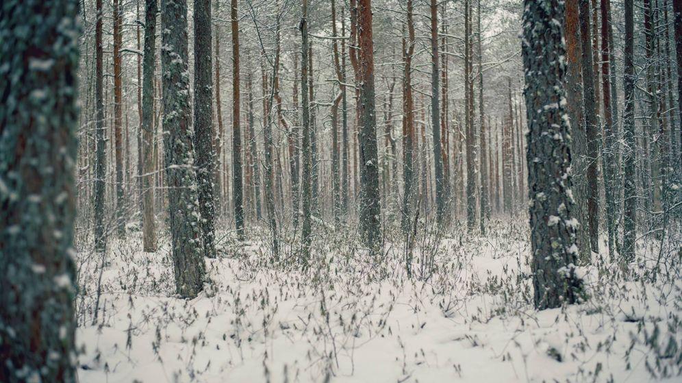 Foto: ¿Cuándo empieza el invierno? (Foto: Unsplash)