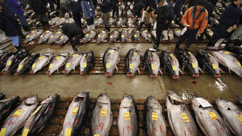 Foto: Mayoristas compran atún fresco en el mercado de Tsukiji en Tokio (Japón). (Reuters/Toru Hanai)