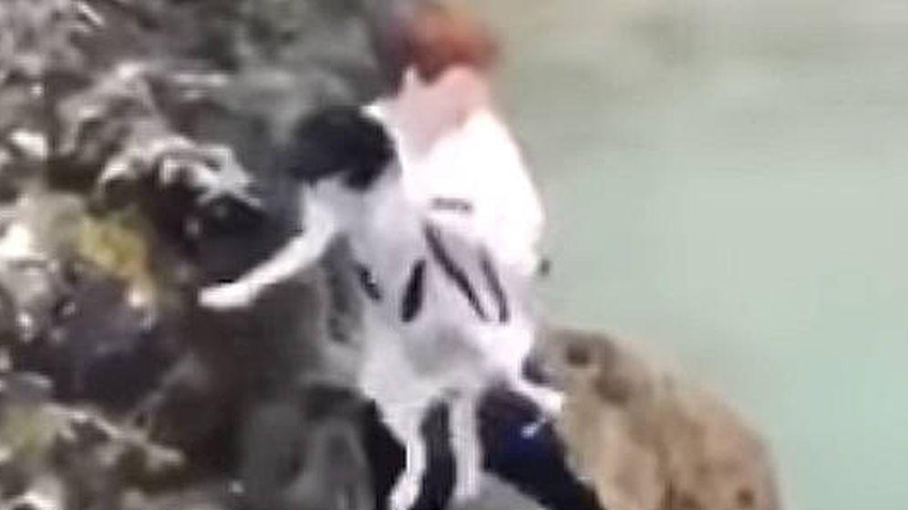 Foto: El joven lanzó al perro al mar desde un acantilado, aunque el animal sobrevivió (Foto: YouTube)