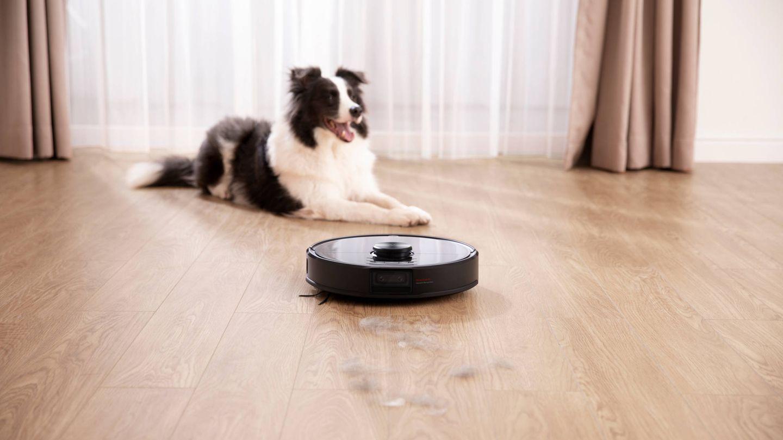 Tu casa limpia y tu perro feliz con Roborock. (Cortesía)