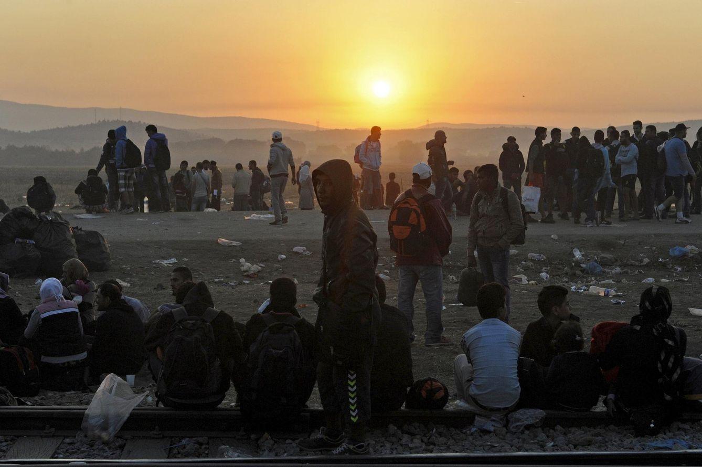 Foto: Refugiados esperan para cruzar la frontera entre Grecia y Macedonia, cerca del pueblo de Idomeni, el 4 de septiembre de 2015 (Reuters).