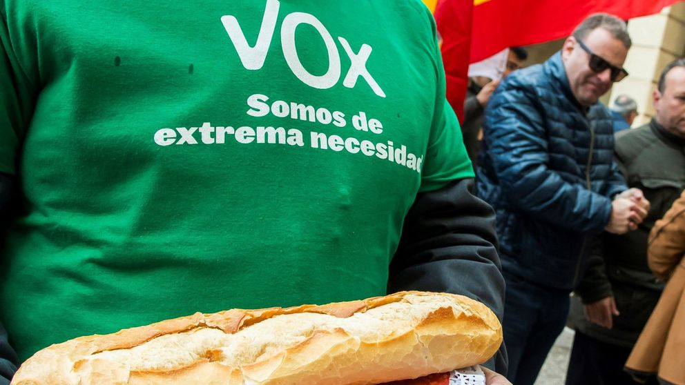 Así el programa electoral de Vox para las elecciones andaluzas y para toda España