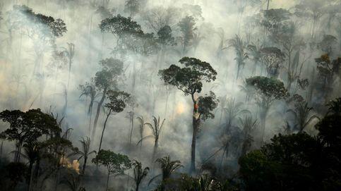 El Amazonas está a punto de volver a arder: Si no hacemos nada será peor que en 2019