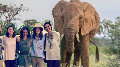 Los vips españoles vuelven a la Botsuana de los elefantes