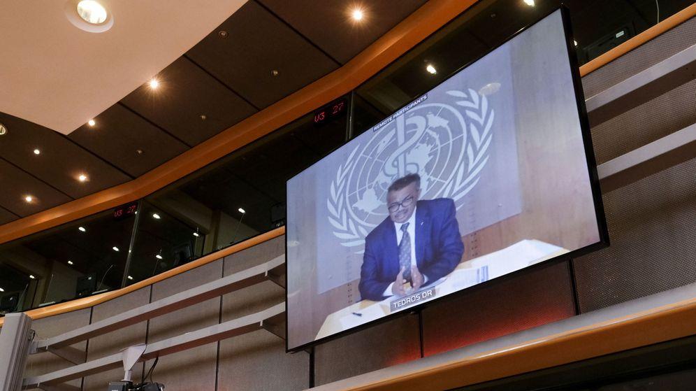 Foto: El director general de la Organización Mundial de la Salud (OMS), Tedros Adhanom Ghebreyesus, interviene por videoconferencia ante el Europarlamento. (EFE)