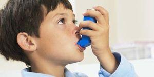 Foto: El asma y las alergias se duplican por los tóxicos en el aire y en la alimentación