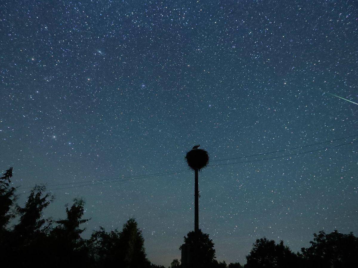 Foto: Lluvia de estrellas de las Perseidas, conocida como las lágrimas de San Lorenzo, vista desde Bielorrusia en 2018 (EFE)