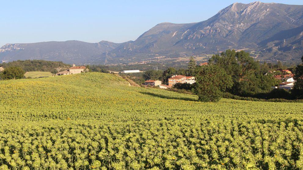 El Valle de Tobalina desvela su abundancia y su belleza