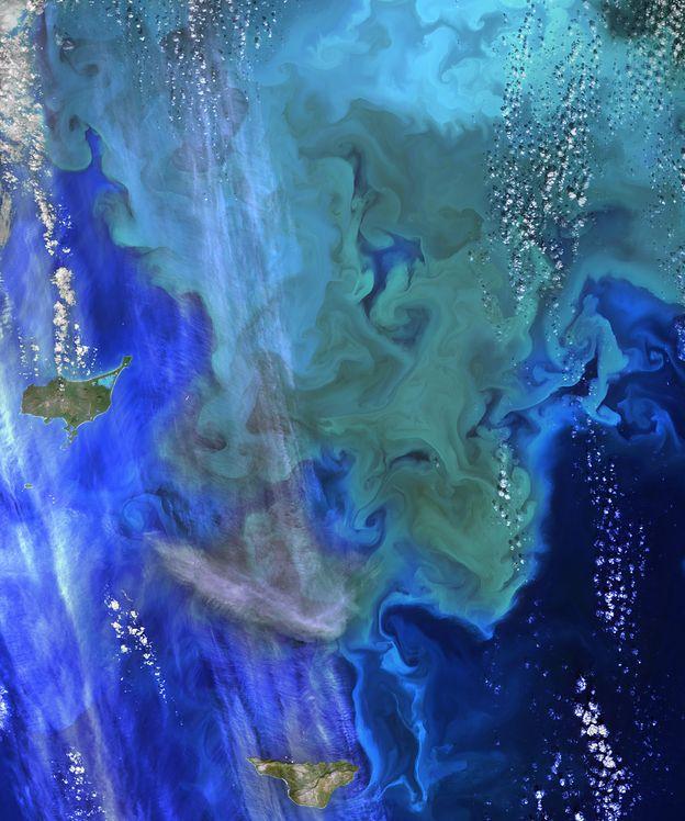 Foto: La NASA celebra el Día de la Tierra: así se ve nuestro planeta desde el espacio