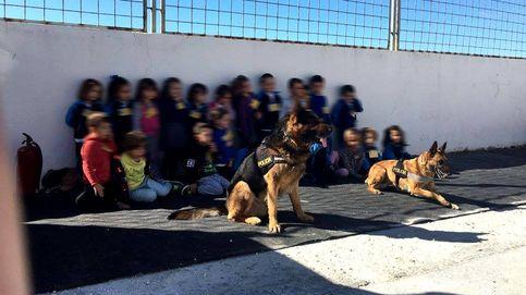 Perros policía acuden a una exhibición en un instituto y terminan haciendo redada