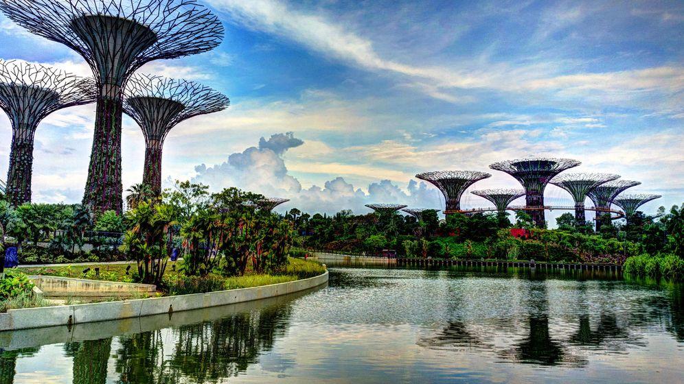 Foto: Jardines de la Bahía, en Singapur (Flickr/Khairul Nizam)