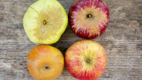 Las calorías que tiene la fruta, según si se toma antes o despúes de las comidas