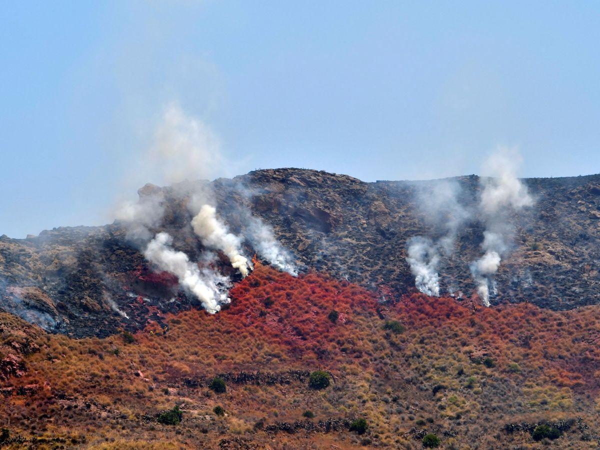 Foto: Foto de archivo de un incendio el 21 de junio en Níjar. (EFE)
