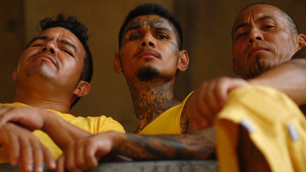 Los españoles, las 'mulas' favoritas del narco para llevar droga a Europa