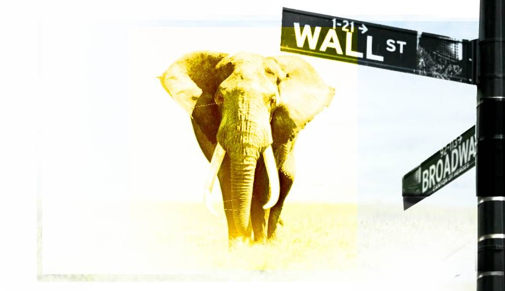 Foto: El 'elefante de Wall Street' se pone las botas con el desplome del mercado. (Imagen: E. Villarino)