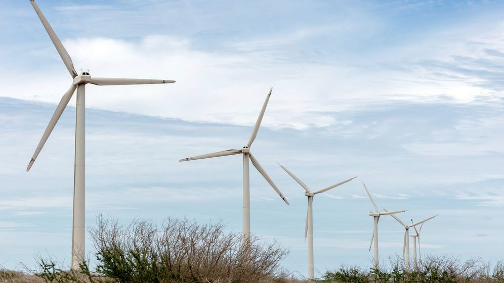 Foto: Rreef invirtió en energía eólica y solar en España. (EFE)