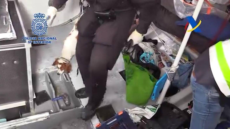 Los perros antidroga, buscando el alijo en el barco. (Policía Nacional)