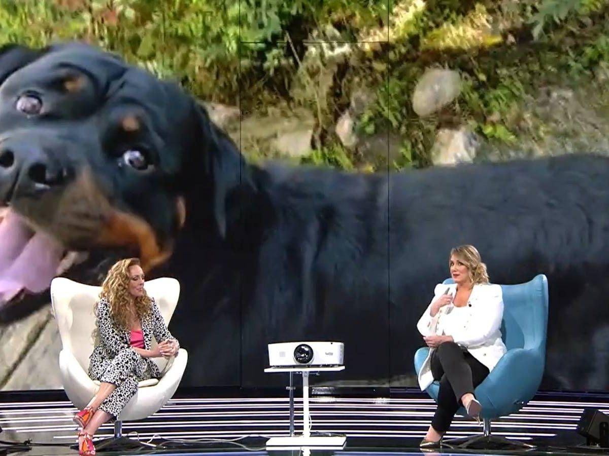 Foto: Rocío Carrasco, durante la entrevista del pasado miércoles. (Mediaset)