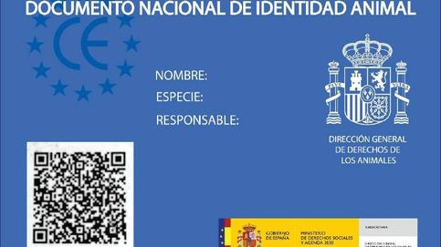 Documento Nacional de Identidad Animal
