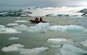Un estudio afirma que los icebergs antárticos promueven la actividad biológica en su entorno