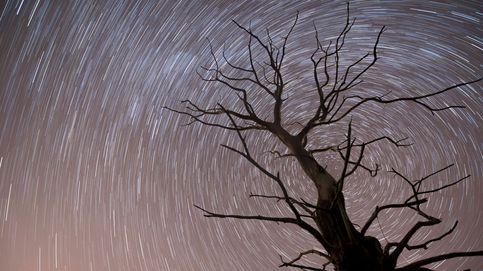 Llegan las Táuridas: horario y cómo ver las bolas de fuego en el cielo nocturno