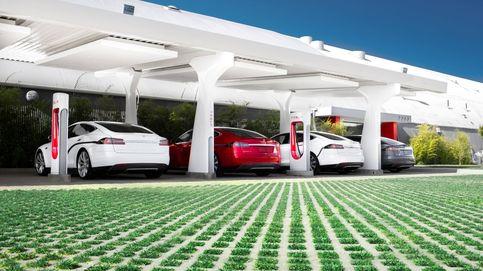Los grandes fabricantes dan el empujón definitivo al coche eléctrico