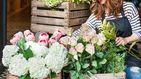 Las floristerías más cool para hacer una inmersión primaveral