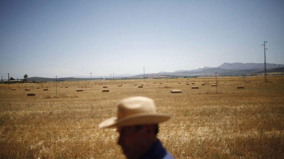 Foto: Un agricultor trabaja el campo en solitario en Antequera. (Reurters)