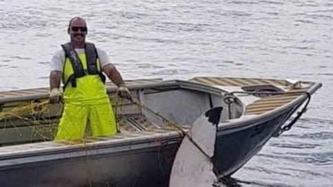 Una red protectora consigue que un tiburón de 4 metros no llegue a una playa