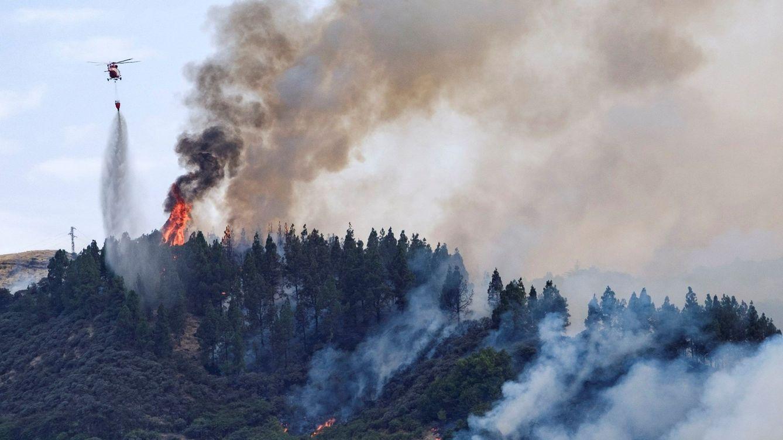 Foto: Imagen del incendio declarado este sábado en Valleseco. (EFE)