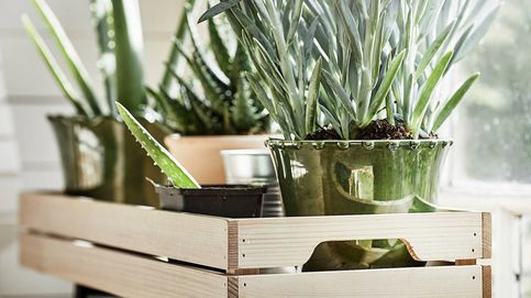¿Jardín urbano? Con esta estupenda idea de Ikea se verá bonito y estiloso