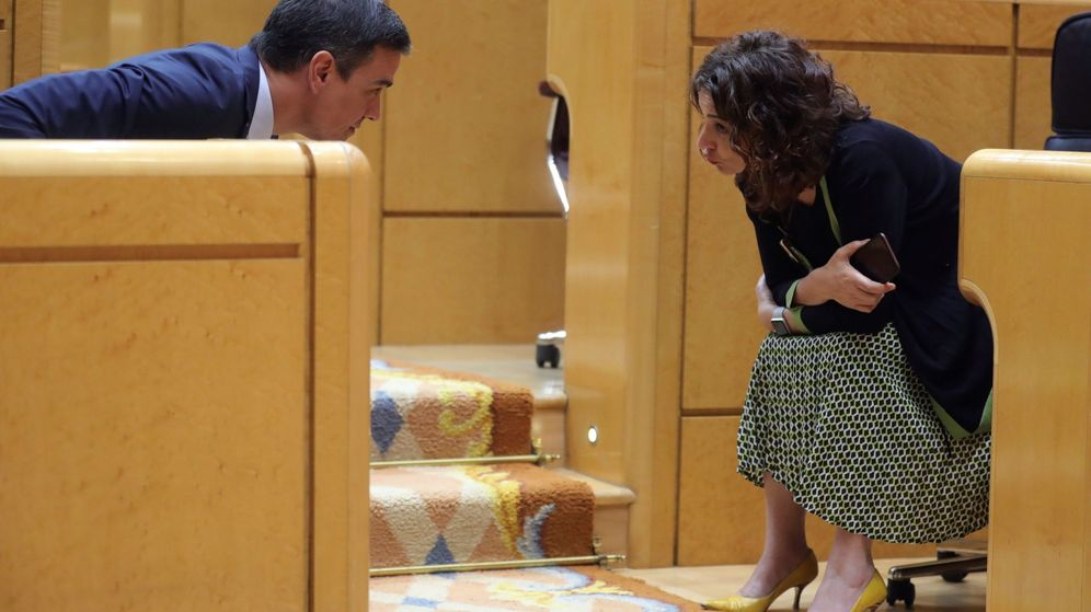 Foto: Pedro Sánchez y María Jesús Montero hablan en el Senado. (EFE)