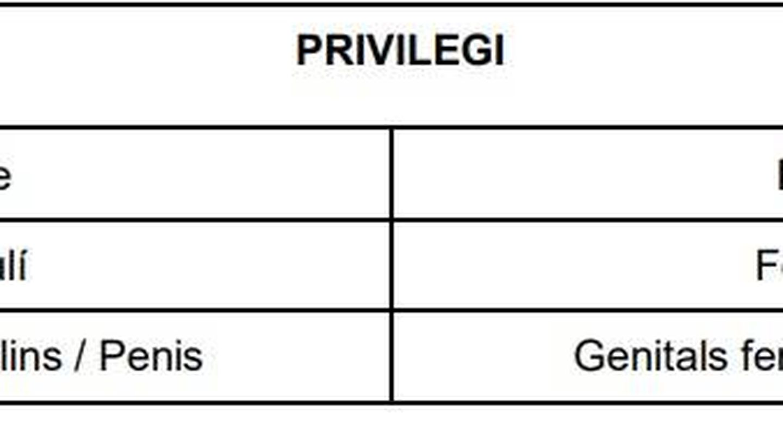 Tabla adjunta en el protocolo de actuación de BioRitme, en la que se especifican los grados de privilegio en la 'sociedad heteropatriarcal'. (BioRitme)