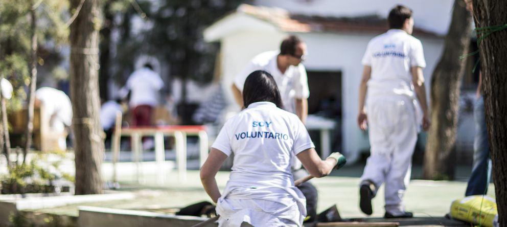 El 62% de las universidades españolas cuenta con más de 100 estudiantes voluntarios