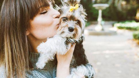 No es un estereotipo: las mujeres prefieren perros más pequeños