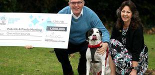 Post de Un hombre gana un millón a la lotería gracias a que su perro es un gourmet