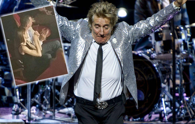Foto: Los Reyes durante el concierto de Rod Stewart en el Teatro Real